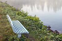 empty bench on a foggy lake shore.
