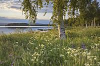 Orsasjön Fryksås Dalarna Sweden.