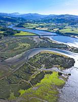 Tidal Marsh, Tidal Wetland (MARISMA), Low Tide, Marismas de Santoña, Victoria y Joyel Natural Park, Cantabria, Spain, Europe.
