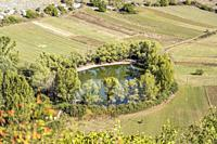 round pond surrounded by trees in green upland, shot in bright light near Calascio, L'Aquila, Abruzzo, Italy.