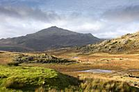Tarn Beck winding through the landscape below Seathwaite Tarn with Harter Fell beyond in the Lake District National Park, Cumbria, England.