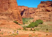 dwarfed hikers in Canyon de Chelly, Arizona.