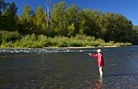 Flyfishing on the North Santiam River, Riverside Park, Stayton, Oregon.