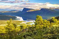 View over Stora sjöfallet nationalpark in the evening, mountains in background, nice evening light, Stora sjöfallet nationalpark, Swedish Lapland, Swe...