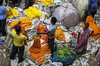 Kolkata, India - September 2020: Flower vendors at the Mullik Ghat flower market on September 26, 2020 in Kolkata, West Bengala, India.