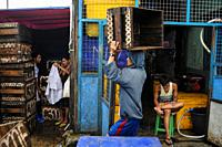 Yangon, Myanmar, Asia - A worker stacks empty crates at the traditional Baho San Pya Fish Market, a wholesale market in the commercial capital of the ...