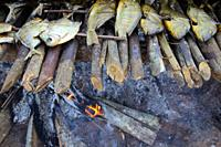 Dried piranhas grilled over wooden fire for a festive event, Mato Grosso, Brazil, South Amreica.