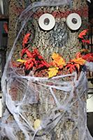 Halloween, decoration,.
