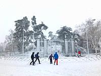 Snowfall. El Retiro park, Madrid, Spain.