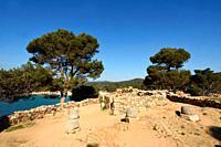 Iberian ruins of Castell, Palamos, Costa Brava, Girona Province, Catalonia, Spain.