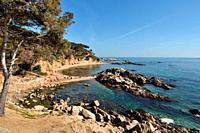 Cala Estreta beach, Palamos, Costa Brava, Girona province, Catalonia, Spain.