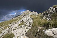 ascending to Serra Des Teixos, Escorca, Mallorca, Balearic Islands, Spain.