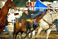 Cowboys compete in Rodeo action.