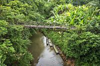 An old wooden bridge at Kampung Bengoh, Sarawak, East Malaysia