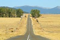Secondary road between El Espinar (Segovia) and Ã. vila.