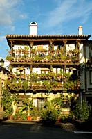 Flowers House in Candeleda, Ã. vila.