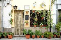 House with flowerpots in Candeleda, Ã. vila.