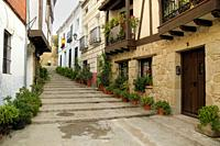 Street with steps and flowerpots in Candeleda, Ã. vila.