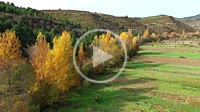Aerial view of a farm land, a river and an autumnal riverside grove. Navarre, Spain, Europe. 4K.