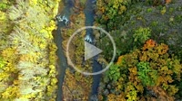 Aerial view of a river and an autumnal riverside grove. Navarre, Spain, Europe. 4K.