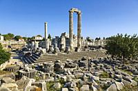 Ruins of ancient Didyma at Didim, Aydin Province, Turkey. Temple of Apollo.