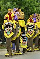 Myanmar, Natogyi, Shinbyu, Novitiation ceremony. Procession . Young children are dressed as royal princes in memory of prince Siddharta Gautama's depa...