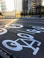 Cycle lane and speed limit. Madrid, Spain.