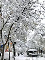 Snowfall. Ibiza street, Madrid, Spain.