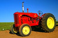 A huge red and yellow tractor is displayed at the Carlsbad Flower Fields in California.