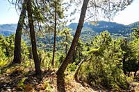 Natural landscape at Sierra de Cazorla, Segura and Las Villas Natural Park, Jaen province, Andalusia, Southern Spain Europe.