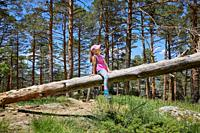 seven years old child with hat sitting on pine tree trunk in forest of Guadarrama Natural Park (Madrid, Spain).