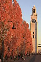 Canada, Quebec, Montreal, Old Port, Clock tower, autumn colors,.