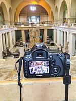 Egypt, Cairo, celebrating the end of the long photography ban inside the Egyptian Museum. Double picture of the museum atrium, and picture of a camera...