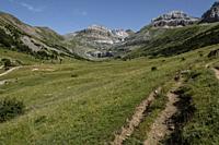 llano de Napazal, Aisa Valley, Jacetania, Huesca, Spain.