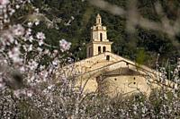 Parish Church of La Immaculada Concepció and almond blossom, Caimari, Mallorca, Balearic Islands, Spain.