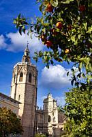 Catedral y Torre del Miquelete, Plaza de la reina, Valencia, Comunidad Valenciana, España