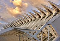 Museo de las Ciencias, Ciudad de las Artes y las Ciencias, Valencia, Comunidad Valenciana, España