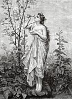 The godness Aurora. Roman mythology, Aurora is the deity who personifies the dawn, equivalent to the Greek Eos. She is a charming woman who flies thro...