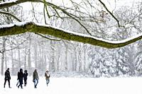 People walking through a winter landscape with snow, Philips de Jongh Park, Eindhoven, The Netherlands, Europe.