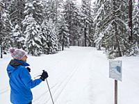 A winter scene with a cross-country skier (model released) looking at a trail map at Lake Wenatchee State Park in eastern Washington State, USA.