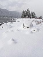 View of the shoreline with the snow-covered Emerald Island in the background at Lake Wenatchee State Park in eastern Washington State, USA.