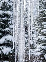 Icicles during the winter on a cabin near Leavenworth in eastern Washington State, USA.