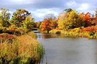 Scenic vista in Presque Isle State Park Erie Pennsylvania along Lake Erie.