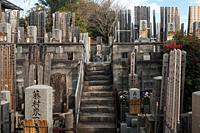 Kyoto, Japan, Asia - Japanese graveyard with tombstones and traditional Toba tablets (memorial tablets).