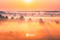 Amazing Sunrise Over Misty Landscape. Scenic View Of Foggy Morning Sky With Rising Sun Above Misty Forest And River. Early Summer Nature Of Eastern Eu...