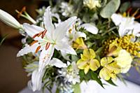 White Lilium. Composition of flowers in a vase.