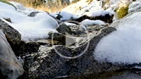 Approaching flowing river water just beside a road in winter New Year Time