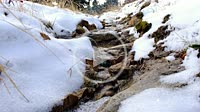 Stabilized shot of river water slowly flowing near the snowy road in winter New Year Time