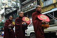 Yangon, Republic of the Union of Myanmar, Asia - A group of Buddhist monks in their saffron robes collects alms on their rounds through downtown Yango...