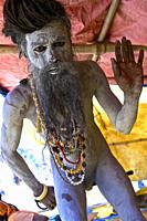 Naga baba performing one of their favorite performance, renouncing sexuality by mortifying one's penis, ghats de benares before shivaratri, UP, india.